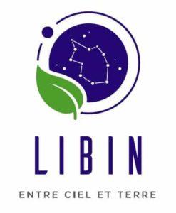 Logo-Libin